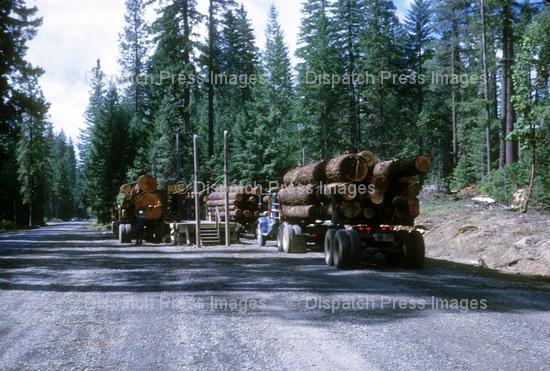 Log Measuring Station