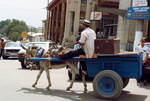 Cart and Donkey