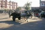 Ox Cart