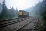 Train and Fog