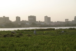 Farming by the Nile