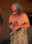 Old  Maori Man