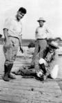 Cajun Alligator Hunters