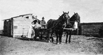 Horse and Wagon Team