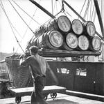 The Dock Worker