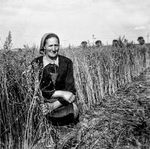 Lady in the Tall Grass