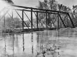 Flood - Ohio River in Illinois
