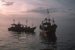 Fishing Boats at Dusk