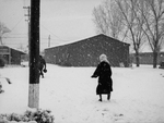 Lady In A Snowstorm