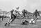 The Quarterback Rollout