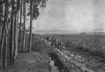 Yunnan, China c.1906